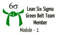 Lean Six Sigma Green Belt Team Member Module 1 : Overview