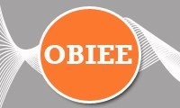 OBIEE 10g & 11g Training Program