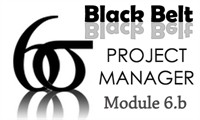 Six Sigma Black Belt Project Manager Certification Module 6.b
