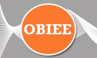OBIEE 10g & 11g Training Program (June Batch)