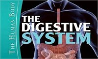MOOC: Human Nutrition and Digestive System
