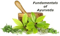 Fundamentals of Ayurveda: Introduction to Indian medicine