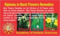 Diploma in Bach Flowers Remedies