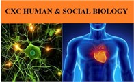 CXC Human and Social Biology Course